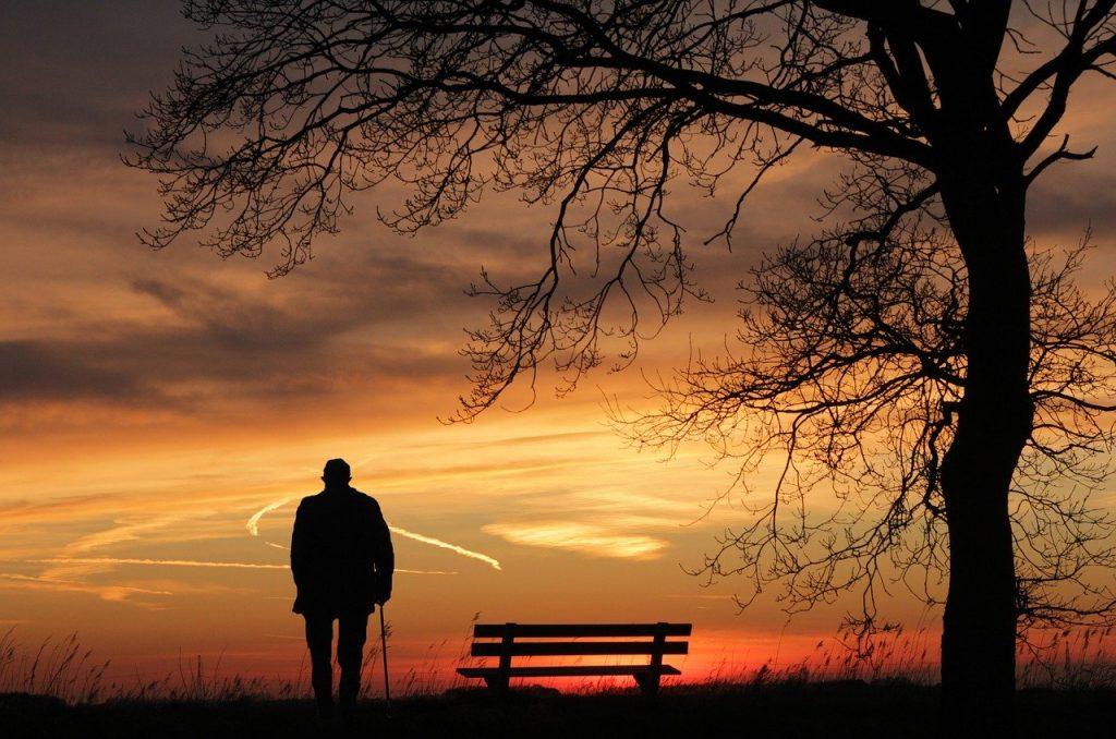 sunset, tree, silhouette